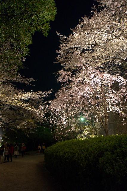 2012-kyushu-367