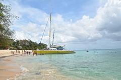 Barbados-2MY_2906