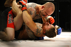 striking combat sports, arm, individual sports, contact sport, sports, combat sport, martial arts, shoot boxing, muscle,