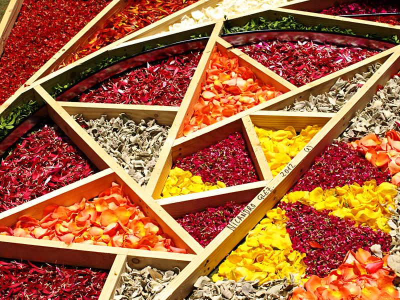 Framework for Corpus Christi Flower Carpets