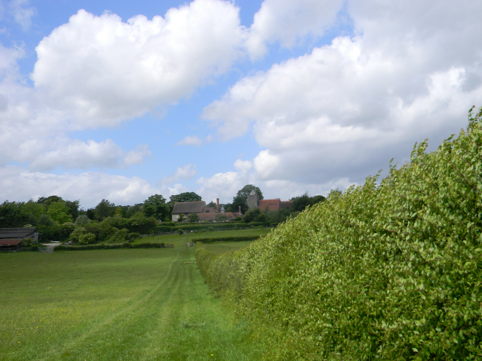 Hedge to Luddesdown Cuxton to Sole Street