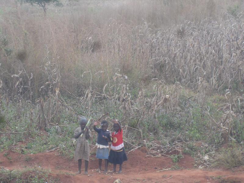 Little Kids Malawi Africa