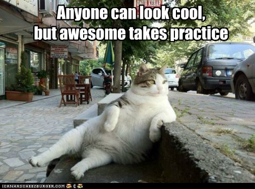 lol cat awesome by curb