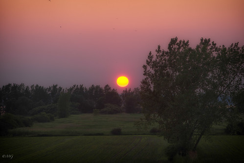 pink sunset sun rose yellow canon gradient fullframe stlaurent tableau southshore coucherdesoleil fleuve dégradé rivesud ef70200mmf28lisusm 5dmkii