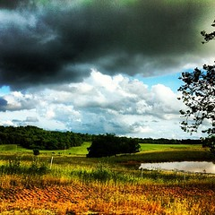 Heavy clouds over a field pond #ky