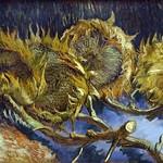 Van_Gogh_-Vier_uitgebloeide_zonnebloemen