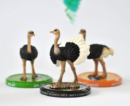 Glue emu to lid