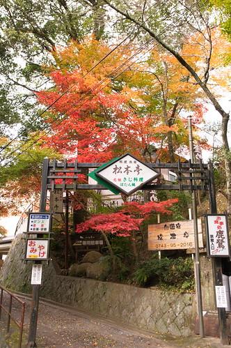 【写真】2012 紅葉 : 笠置山もみじ公園/2020-05-28/IMGP6120