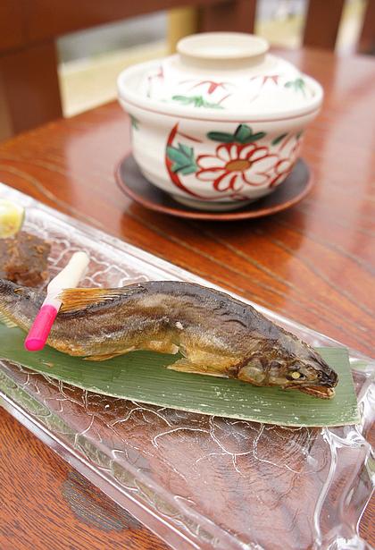 京都美食納涼床23