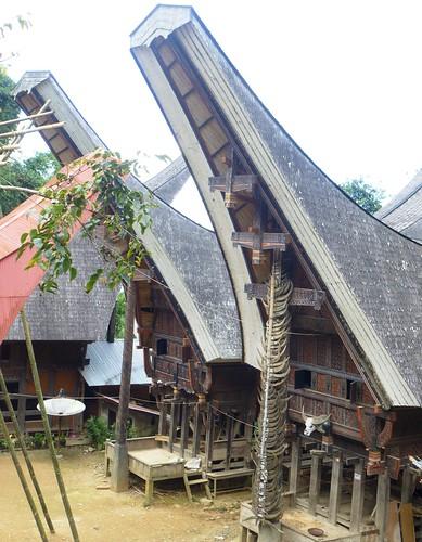 Sulawesi13-Lo'ko Mata-Ke'pa (23)