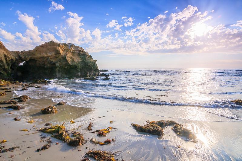 Pearl St Beach-9773