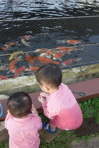 Kids admiring the fishes