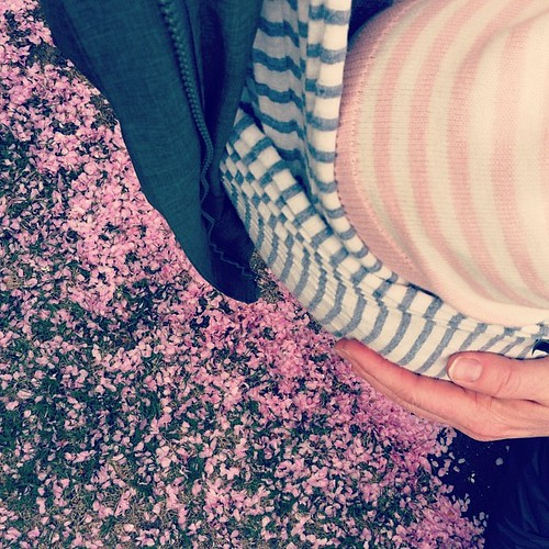 more stripes. more pink. snug little bug in my @sollybabywrap which we both love. more spring!
