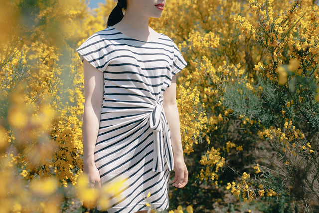 striped dress with tie