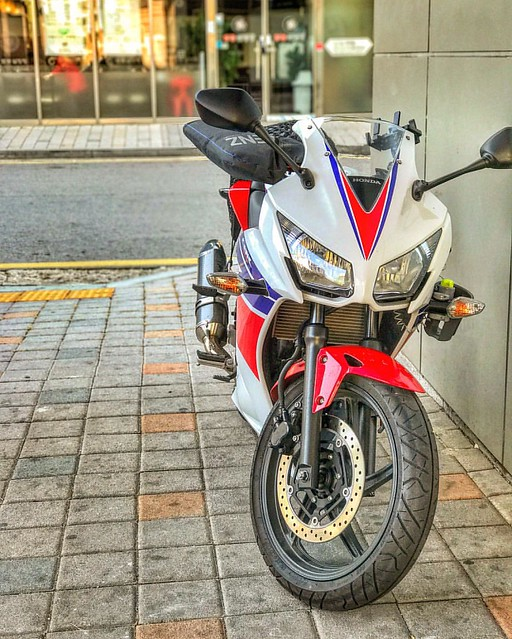 #honda #cbr #cbr300r #motorcycle #bike #rider #quarterbike #speed #riding #drive #mileage #fuelefficiency #motorbike #cycle #scooter #autobicycle  #혼다 #씨비알 #씨브랄아님 #쿼터바이크 #연비킹 #레플리카  #오토바이 #바이크 #모터사이클