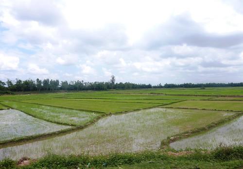 V-Route Pleiku-Quy Nhon (50)