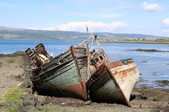 8 juni 2013: Isle of Mull en Staffa