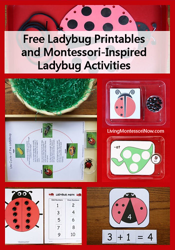 Montessori-Inspired Ladybug Activities Using Free Printables
