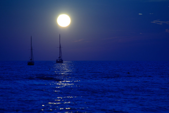 blue regata