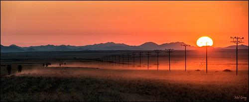 sunset landscape scenic aus namibia wildhorses africansunset caviardreams pinnaclephotography garubplains