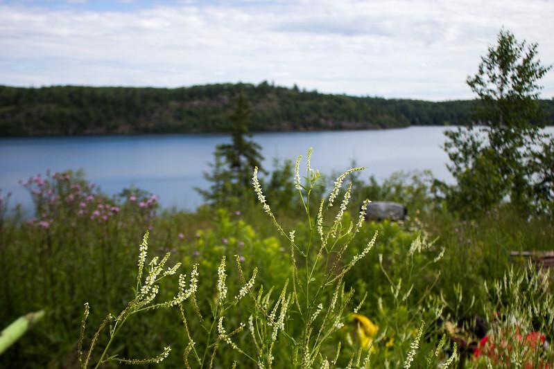 at Oliver Lake