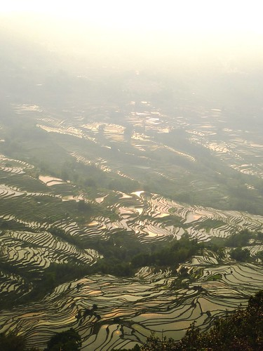 Yunnan13-Yuanyang 24-Bada (24)