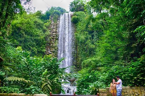 world park bird waterfall singapore artificial waterfalls aviary jurong tallest openaccess peopleenjoyingnature