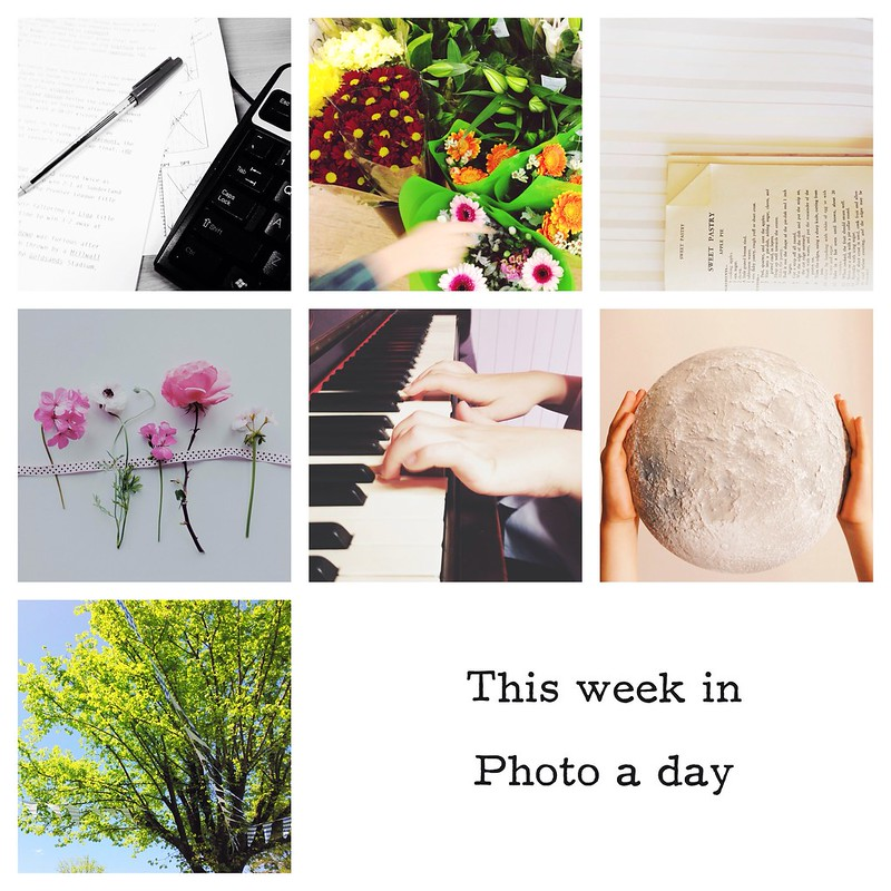 Snapshots // October 13 ~ photo a day wrap