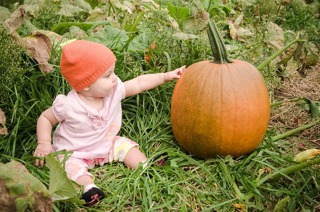 20131012-Pumpkin-Patch-0808