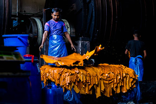 Leather Processing
