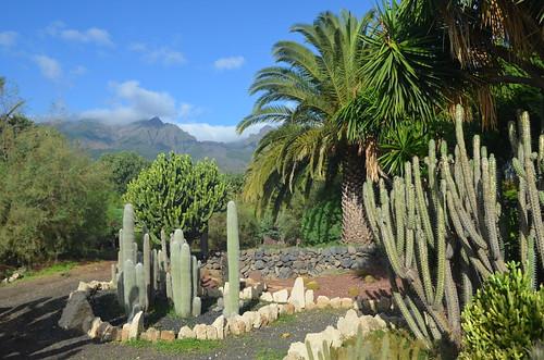 Gardens, Hotel Rural Salamanca, Guimar