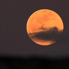 Boa noite, majestosa senhora #lua #moon #cabodesantoagostinho