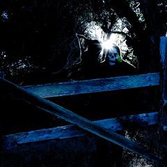 Grim Reaper in blue