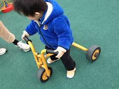 三輪車とらちゃん(2012/4/7)