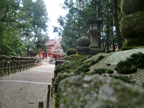 Temple tour.