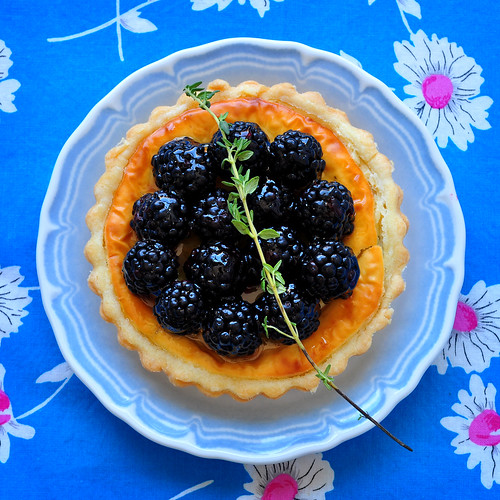 Goat Cheese and Blackberry Tart