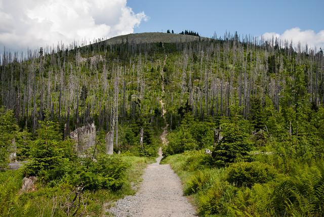 Gipfelweg