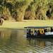 Nagarhole boat ride