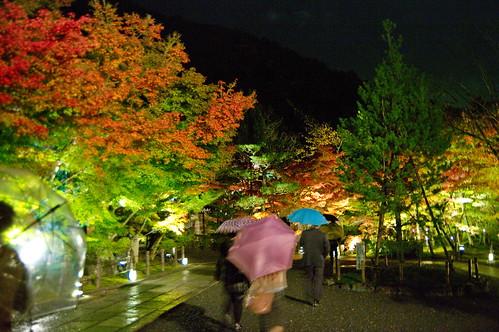 【写真】2012 紅葉 : 永観堂/2020-05-30/IMGP6240