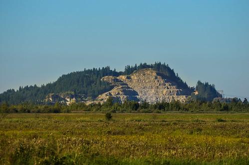 <p>Grant Narrows, Pitt Meadows, British Columbia, Canada<br /> Nikon D5100, 70-300 mm f/4.5-5.6<br /> June 30, 2013</p>