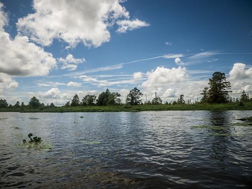 southcarolina kayaking paddling lakemarion santeeriver lcu lowcountryunfiltered lowfallslanding poplarcreeklanding