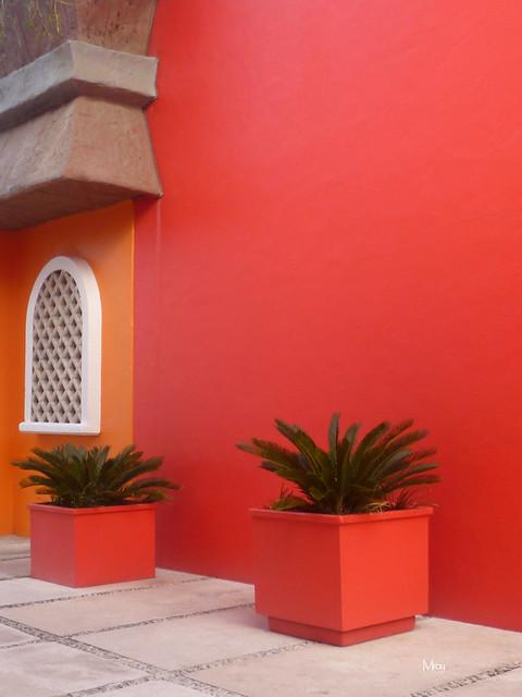 11_27_2012 lx costa maya 050