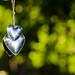 heart beats by Jean.M