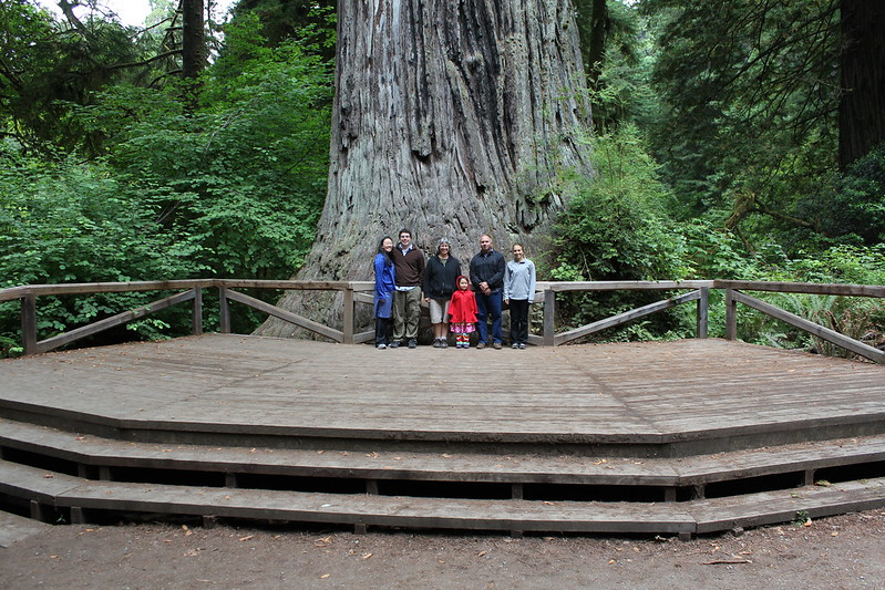 Big Tree by replicate then deviate