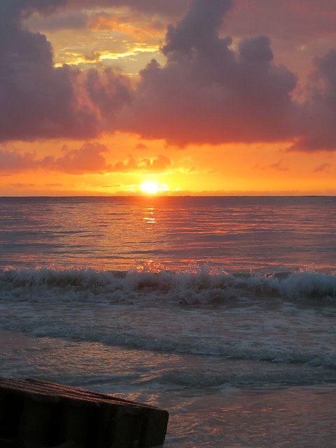 Hawaii - August 2013 280