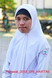 Perawat_2013_SRI_HARTINI