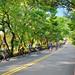 20130915陽明山單車節1