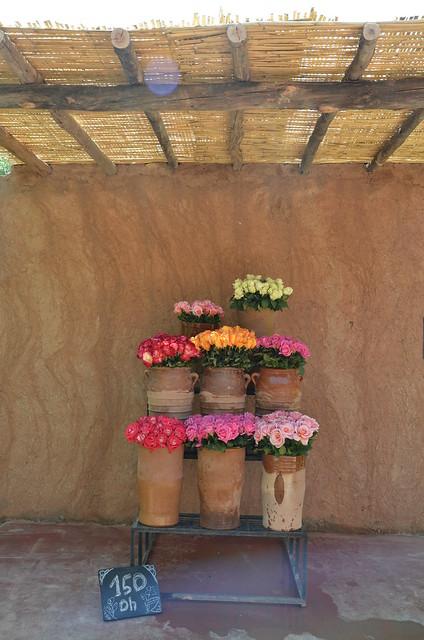 marrakech april 2015