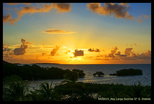 ocean sea sky cloud tree nature sunrise meer florida natur himmel wolke palm sonnenaufgang palme baum floridakeys keylargo dovecreeklodge