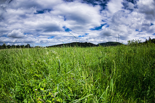 flowers blue sky panorama cloud white mountains color green nature beautiful beauty grass clouds landscape spring natural meadow croatia clear hrvatska splendor klana primorskogoranskažupanija pentaxk3